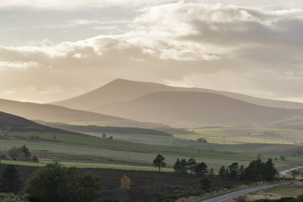 Ben Rinnes Blasted by Light with thanks to Jasper Image